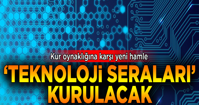 Kur oynaklığına karşı yeni hamle! 'Teknoloji seraları' kurulacak