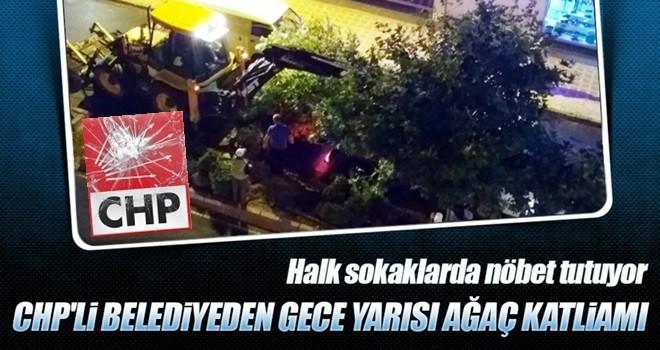 Tekirdağ'da CHP'li belediyenin ağaç katliamı son anda önlendi