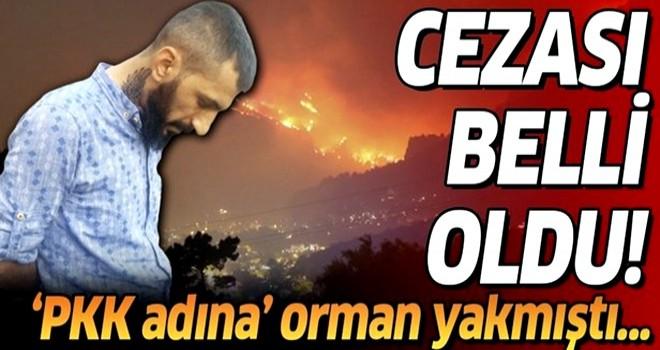 Aydos Ormanı'nı yakan PKK'lı Yakup Akman'a müebbet hapis cezası