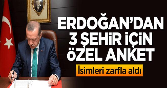 Başkan Erdoğan'dan 3 şehir için özel anket