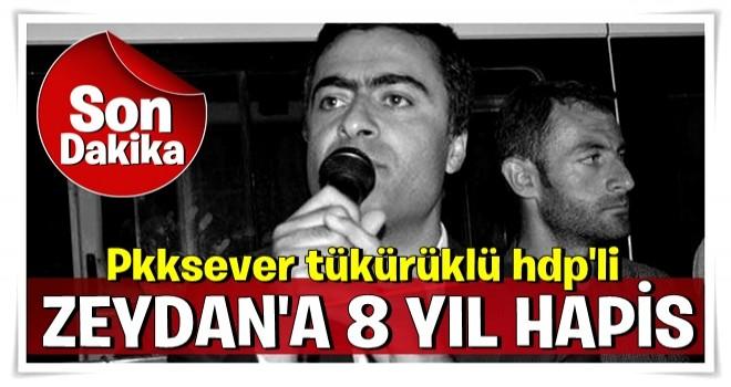 Son dakika: HDP'li Abdulalh Zeydan'a 8 yıl 1 ay 15 gün hapis .