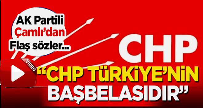 AK Partili Çamlı'dan canlı yayında flaş CHP açıklaması