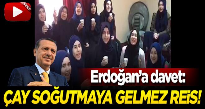 İmam Hatiplilerden Erdoğan'a davet: Çay soğutmaya gelmez Reis!