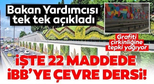 İstanbul'daki grafiti çirkinliğine tepki yağıyor! Bakan Yardımcısı Birpınar'dan İBB'ye çevre dersi
