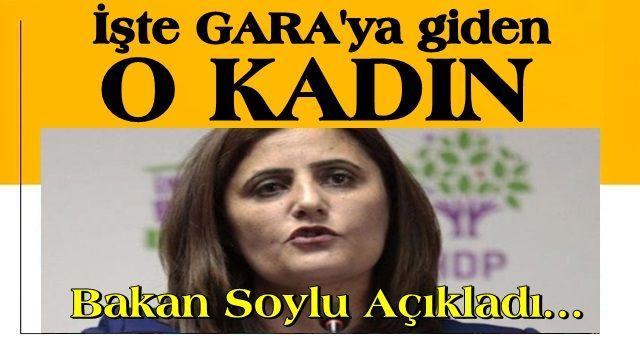 Bakan Soylu Gara'ya giden HDP'li vekili açıkladı!