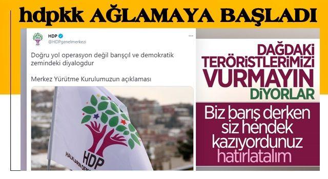 HDP, TSK'nın Irak'ın kuzeyindeki operasyonlarını eleştirdi