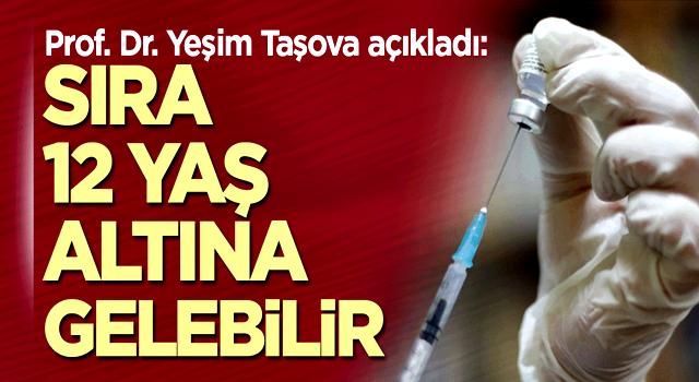 Prof. Dr. Taşova açıkladı: Sıra 12 yaş altına gelebilir