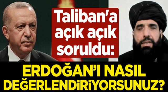 Taliban'a açık açık soruldu: Erdoğan'ı nasıl değerlendiriyorsunuz?