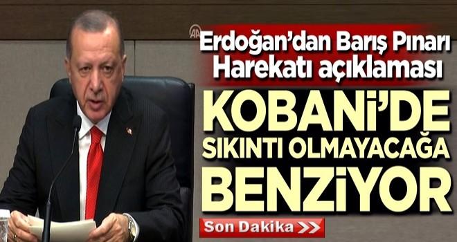 Başkan Erdoğan'dan Barış Pınarı Harekatı açıklaması: Kobani'de sıkıntı olmayacağa benziyor