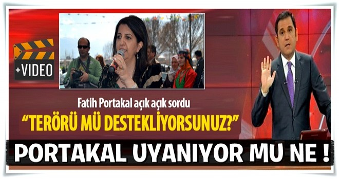 Fatih Portakal'dan Pervin Buldan'a: Terörü mü destekliyorsunuz?
