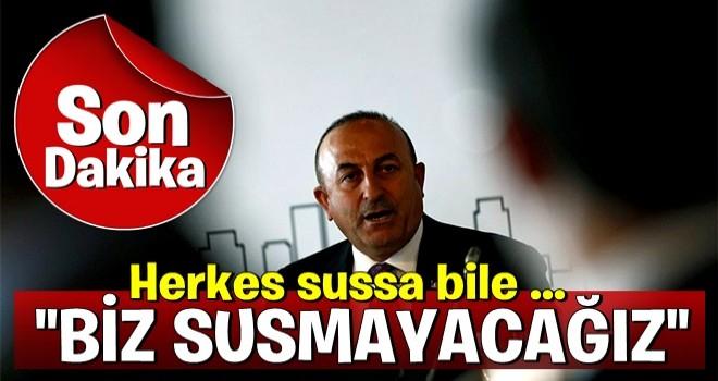 Çavuşoğlu: Herkes sussa bile Türkiye susmayacak