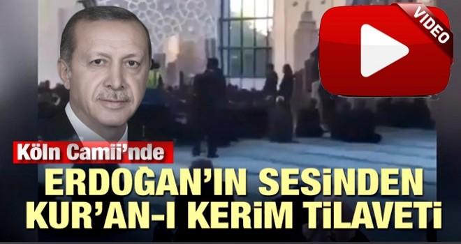 Başkan Erdoğan, Köln Camii'nde Kur'an okudu