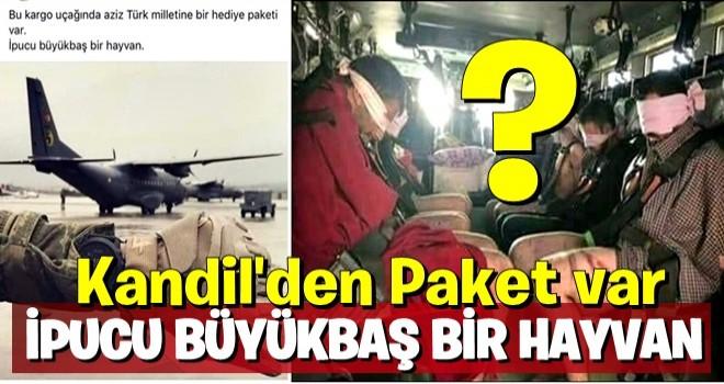 Kandil'den getirilen PKK'lılarla ilgili flaş iddia