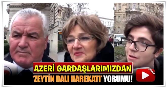 İşte Azerbaycan halkının 'Zeytin Dalı Harekatı' hakkındaki fikri!