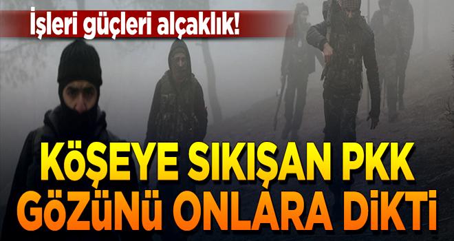 Köşeye sıkışan PKK, ÖSO'cuların ailelerini kaçırıyor!