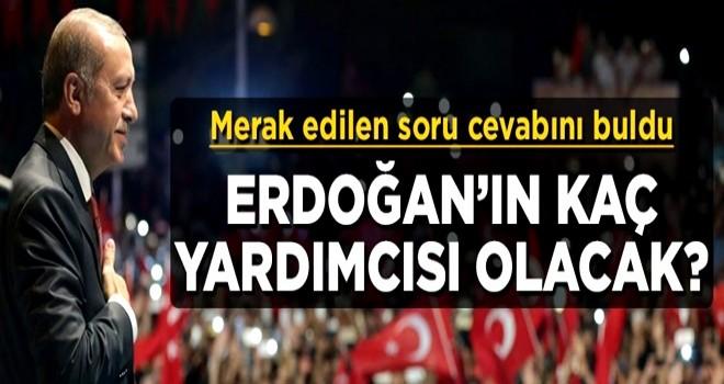 Merak edilen soru cevabını buldu! Cumhurbaşkanı Erdoğan'ın kaç yardımcısı olacak?