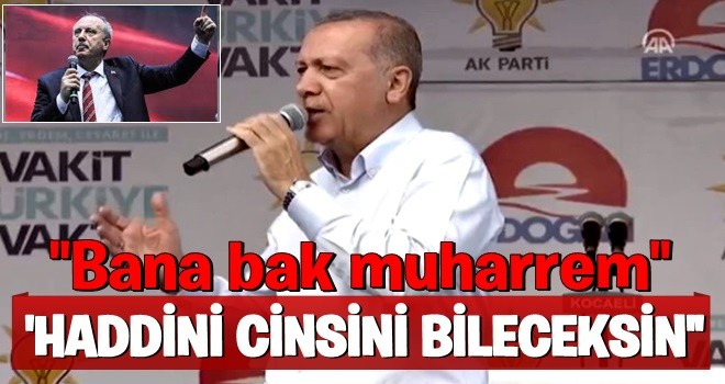Erdoğan: Haddini cinsini bileceksin