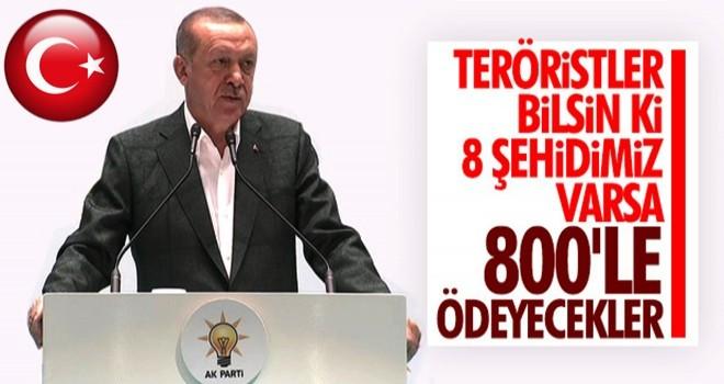 Başkan Erdoğan'dan terörle mücadelede kararlılık mesajı