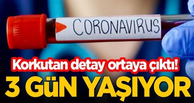 Korkutan koronavirüs detayı: 3 gün yaşıyor