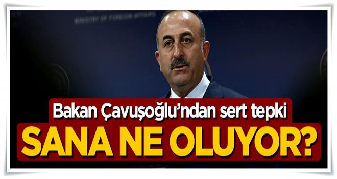 Bakan Mevlüt Çavuşoğlu'ndan Almanya'ya sert tepki: Sana ne oluyor?