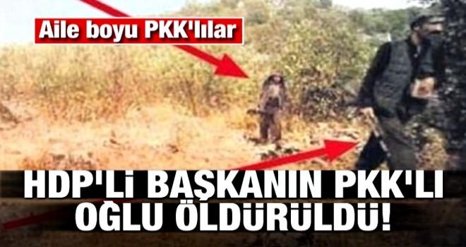 HDP'li başkanın PKK'lı oğlu öldürüldü! Aile boyu PKK'lılar