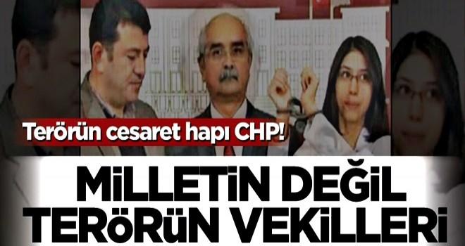 Terörün cesaret hapı CHP! Milletin değil terörün vekilleri