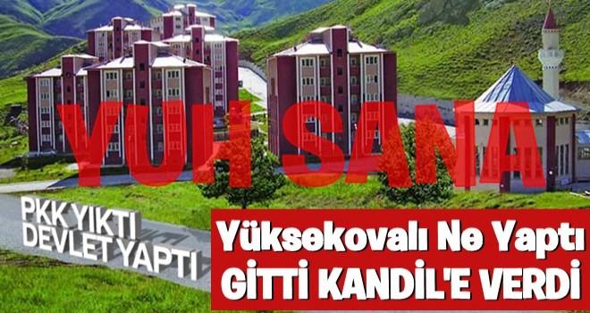 Yüksekova Kandil destekli HDP'yi tercih etti