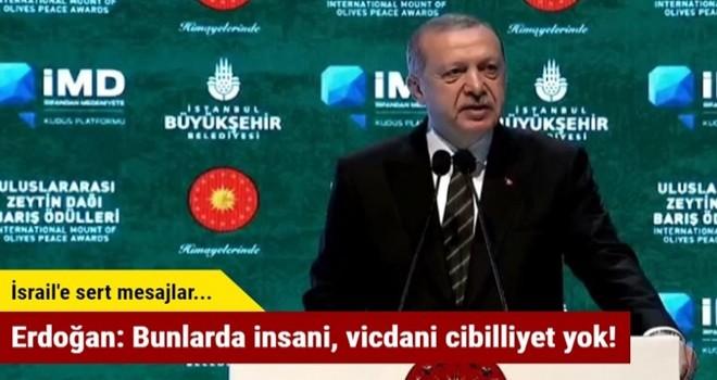 Erdoğan: Bunlarda insani, vicdani cibilliyet yok!