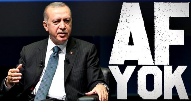 Erdoğan'dan Bahçeli'ye af yanıtı