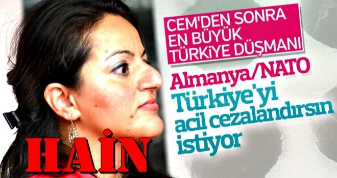 Sevim Dağdelen'in 'Türkiye'yi cezalandırın' çağrısı