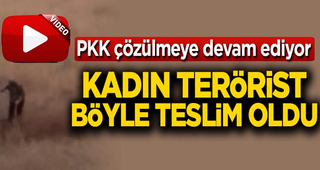 Şırnak'ta kadın terörist böyle teslim oldu