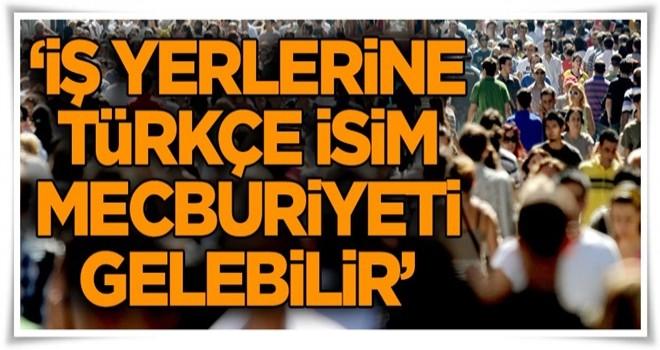 """""""İş yerlerine Türkçe isim mecburiyeti gelebilir"""""""