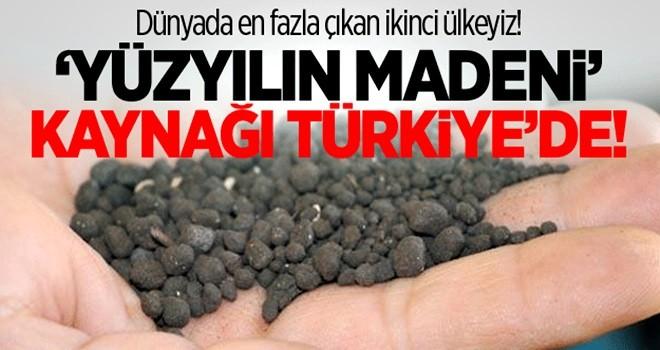 Yüzyılın madeni 'Leonardit'in kaynağı Türkiye'de