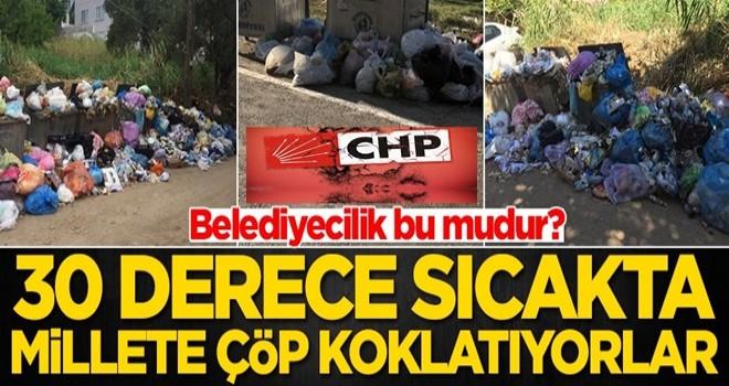 Halk çöpleri toplamayan belediyeye öfkeli