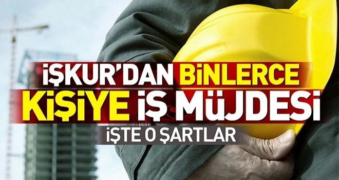 İŞKUR'dan 4465 kişiye iş müjdesi! İŞKUR'da büro memuru, şoför ve güvenlik görevlisi alımına nasıl başvurulur? .