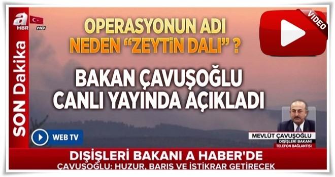 Çavuşoğlu 'Zeytin Dalı' operasyonunu A Haber'e anlattı