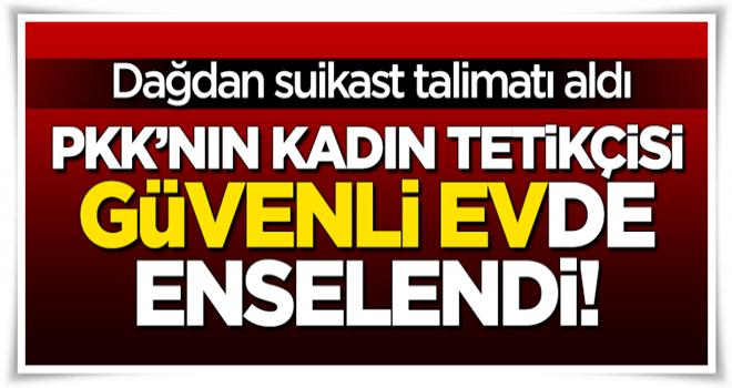 """PKK'nın kadın tetikçisi """"güvenli ev""""de yakalandı!"""