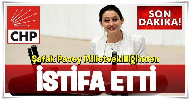 Şafak Pavey milletvekilliğinden istifa etti!