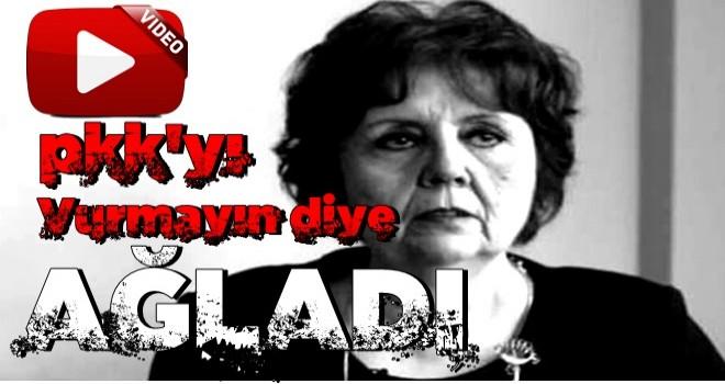 Ayşenur Arslan biraz daha konuşsa PKK için ağlayacaktı!