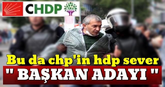 CHP'nin adayı HDP sever çıktı!