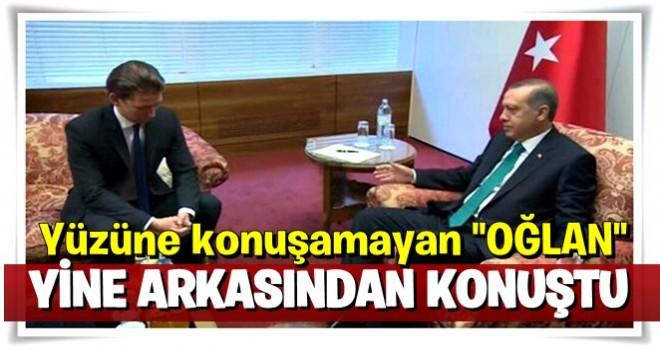 Avusturya Dışişleri Bakanı yine Erdoğan'ın arkasından konuştu