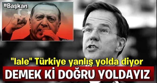 Hollanda'dan küstah çıkış: Türkiye yanlış yolda