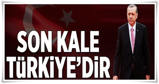 Paşayeva: Son kale Türkiye'dir  .
