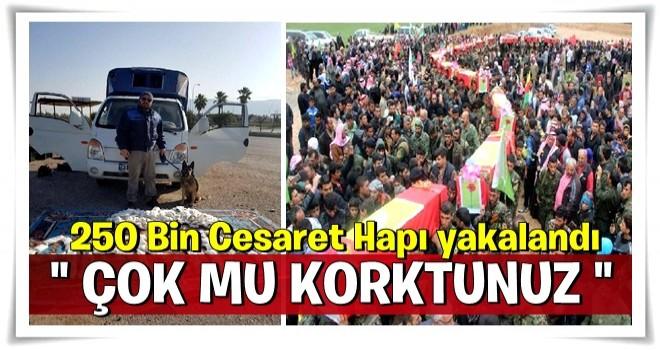 YPG'ye giden 250 bin cesaret hapı yakalandı!
