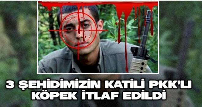 3 şehidimizin katili PKK'lı köpek itlaf edildi
