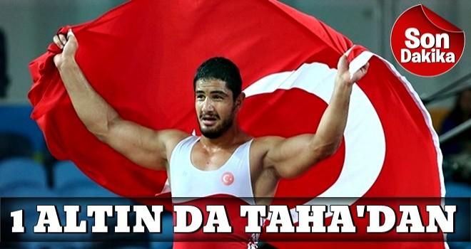 Avrupa Güreş Şampiyonası'nda Taha Akgül altın madalya kazandı
