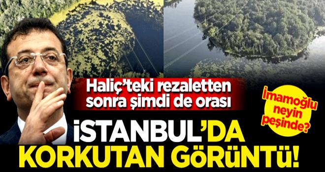 Haliç'ten sonra bu defa da Elmalı Barajı'nda korkutan görüntü