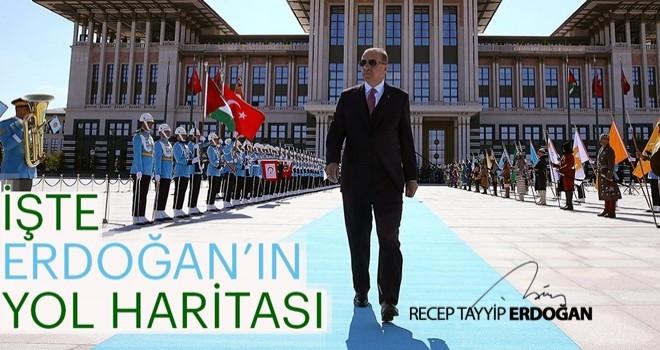 İşte Erdoğan'ın yol haritası