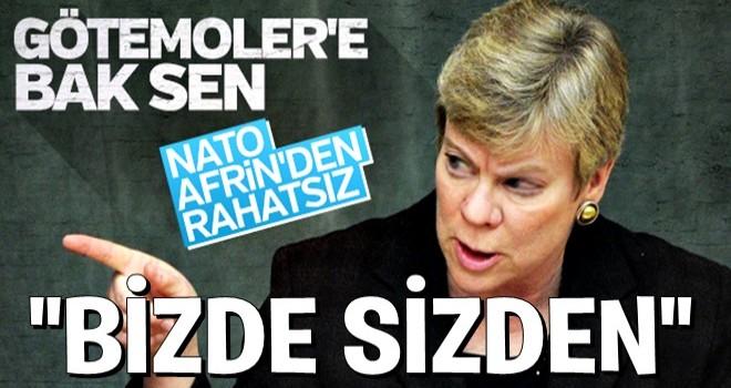 NATO'nun Zeytin dalı hazımsızlığı