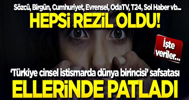 'Türkiye cinsel istismarda dünya birincisi' safsatası ellerinde patladı! İşte veriler